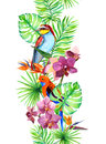 Tropical leaves, exotic parrot bird, orchid flowers. Seamless border. Water color frame