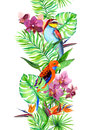 Tropical leaves, exotic parrot bird, orchid flowers. Seamless border. Watercolor stripe
