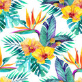 Tropical leaves and flowers. Floral design background. Royalty Free Stock Photo