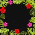 Tropical leaves frame with copyspace. Bright hand drawn leaf and hibiscus flowers ar dark background.