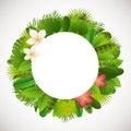 Tropical leaves frame. Floral jungle design background. Palm, banana, frangipany, monstera, strelitzia leaves Royalty Free Stock Photo