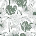 Tropical leaves, jungle leaves seamless vector floral pattern background Royalty Free Stock Photo