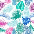 Tropical leaves of palm tree seamless pattern, vector