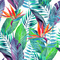 Tropical leaves seamless pattern. Floral design background. Royalty Free Stock Photo