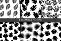 Tropical leaves. Seamless pattern set. Vector. Collection of 6 black and white repeating pattern in swatch . Black and white. Hawa Royalty Free Stock Photo