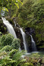 Tropical Maui Waterfall Stock Photos