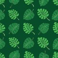 Tropical monstera leaves on green background seamless pattern. Hand drawn ink vector illustration