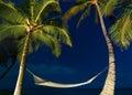 Tropical Night Sky Royalty Free Stock Photo
