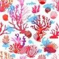 Tropical ocean corals.