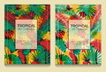 Tropical offset print effect jungle templates