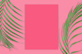 Tropical palm leaves with empty paper for your design on pink ba