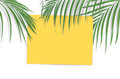 Tropical palm leaves with empty paper for your design on white b