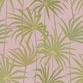 Tropical palm leaves seamless pattern. Tropic jungle fan leaf background