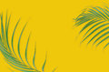 Tropical palm leaves on yellow background. Minimal nature. Summe