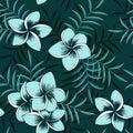 Tropical seamless floral hawaiian frangipani pattern