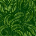 Tropical palm tree leaves background, summer pattern. Royalty Free Stock Photo