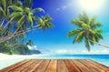 Tropical Paradise Beach And Wo...