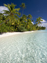 Tropical paradise cook islands south pacific the vacation of aitutaki lagoon in the in the Royalty Free Stock Images