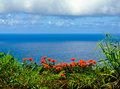 Tropical paradise vista, Road to Hana, Maui Hawaii Stock Photo