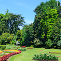 tropical park with flower beds, lawns and trees Royalty Free Stock Photo