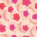 Tropical pink hibiscus flowers seamless pattern. Royalty Free Stock Photo