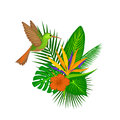 Tropical plants leaves flower arrangement with hummingbird Royalty Free Stock Photo