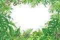 Tropical Plants Rectangle Frame