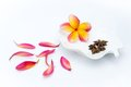 Tropical plumeria and spice in white plate Royalty Free Stock Photo