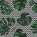 Tropical Print. Jungle Seamless Pattern. Vector Tropic Summer Motif with Hawaiian Flowers.