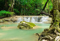 Tropical rain forest falls Stock Photography