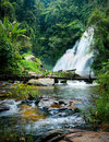 Tropical rain forest landscape with pha dok xu waterfall and bamboo bridge thailand jungle plants flowing water of mae klang luang Royalty Free Stock Image