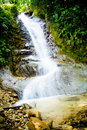 Tropical rain forest with waterfall Royalty Free Stock Photography
