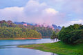 Tropical rain forests,Ratchapraph a National Park Stock Images