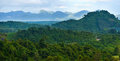 Tropical rain forests,Ratchapraph a National Park Royalty Free Stock Photos