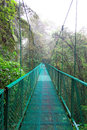 Tropical rainforest costa rica monteverde south america Stock Photos