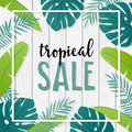 Tropical sale template or banner with hand drawn palm leaves and white wooden background. Summer design. Business