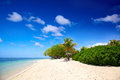 Tropical sand beach paradise white in island Royalty Free Stock Photography