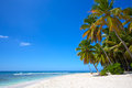 Tropical sand beach paradise white with palms in island Stock Photography