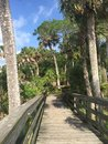 Tropical scenic view wooden bridge and palm trees Royalty Free Stock Photo