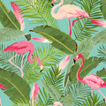 Tropical Seamless Flamingo and Floral Summer Pattern. For Wallpapers, Backgrounds, Textures, Textile, Cards. Royalty Free Stock Photo