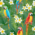Tropical Seamless Parrot and Floral Summer Pattern. For Wallpapers, Backgrounds, Textures, Textile, Cards. Royalty Free Stock Photo