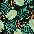 Tropical seamless pattern with bright leaves and plants on green background. Vector design. Jungle print. Printing and textiles.