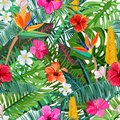 Tropical seamless pattern with flowers hibiscus, plumeria, strelitzia and palm, monstera leaves. Vector illustration.