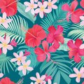 Tropical seamless pattern with hibiscus syriacus and plumeria flower with leaf on blue background. Royalty Free Stock Photo