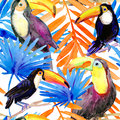 Tropical Seamless pattern. Watercolor painting.