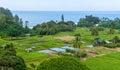 Tropical Seaside Farm
