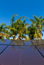 Tropical solar panels Royalty Free Stock Photography
