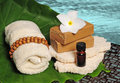 Tropical spa products next to ocean or pool in location Royalty Free Stock Image