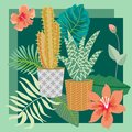 Tropical succulent garden. Vintage textile collection. Royalty Free Stock Photo