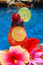 Tropical Summer Drink Royalty Free Stock Photo